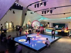 Frost Science Museum - 1 (33)