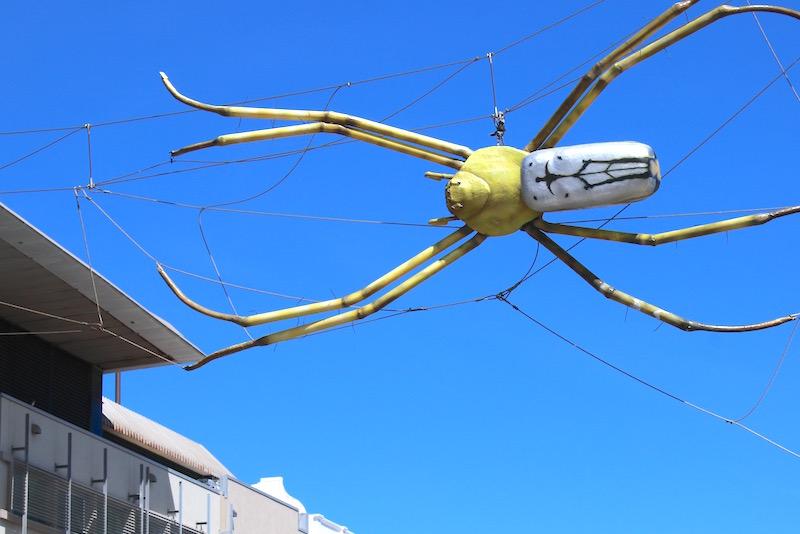 Townsville city tour