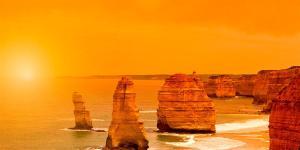 Yarra Valley, Great Ocean Road and Penguins Package