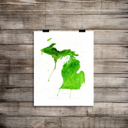 """The Great Lakes State"""