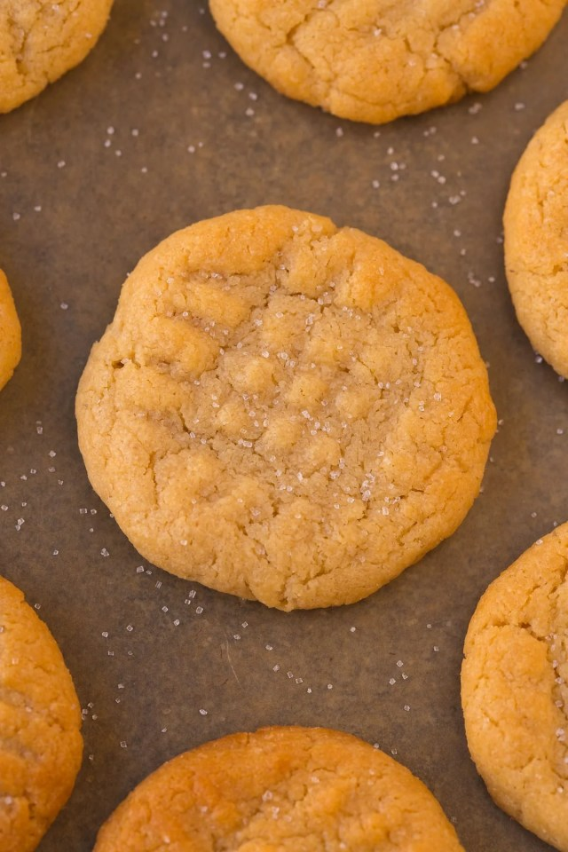 3 Ingredient flourless sugar free peanut butter cookies made eggless and topped with sea salt