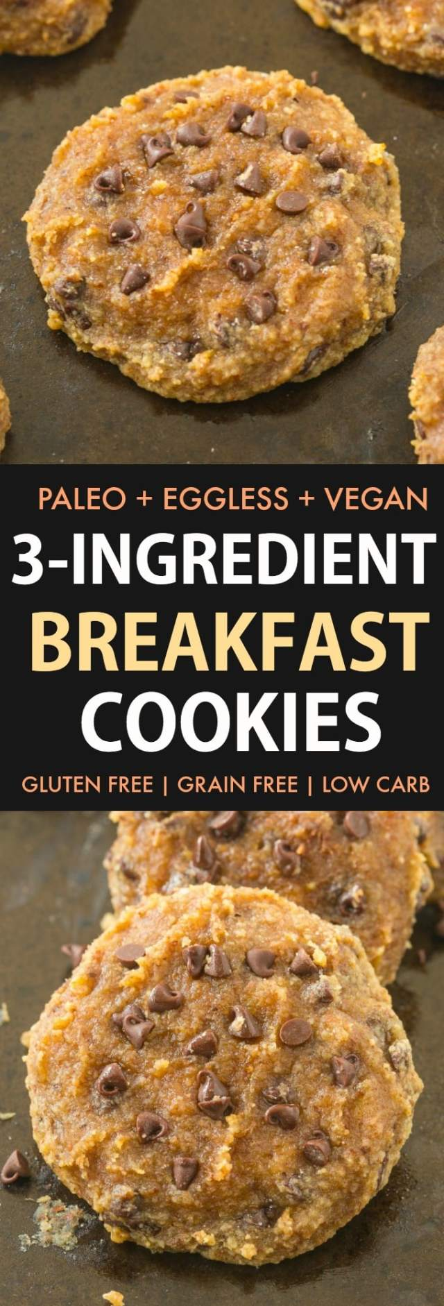 Paleo and vegan breakfast cookies made with almond flour and topped with chocolate chips