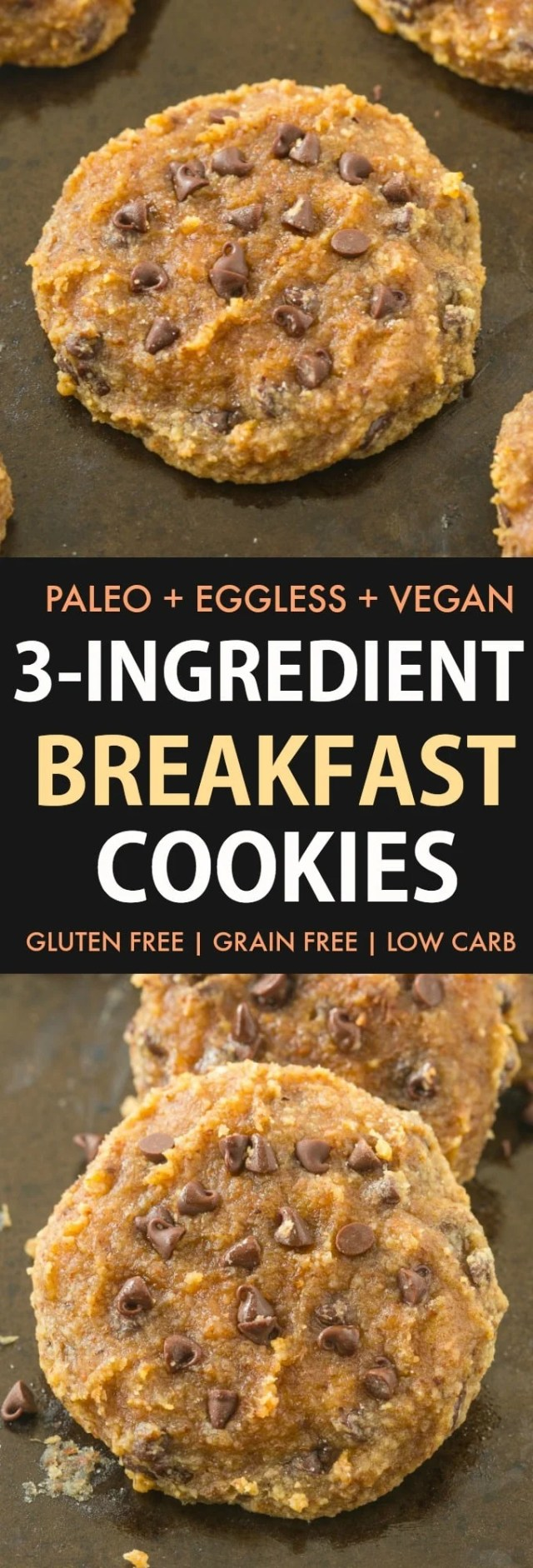 3 Ingredient Paleo Breakfast Cookies (Vegan, Gluten Free)