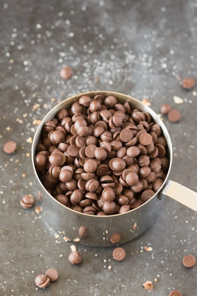 A cupful of chocolate chips