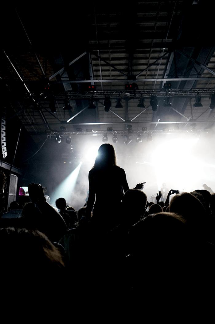Berlin Festival Crwod