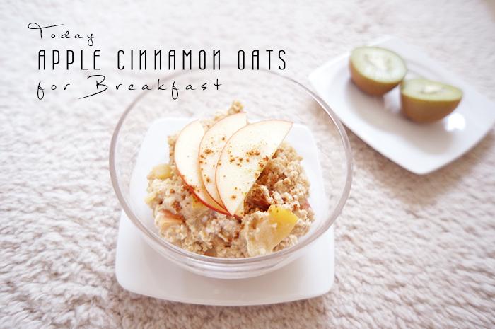 Apple Cinnamon porridge I