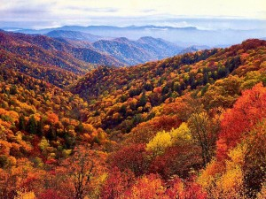smokey mountains fall