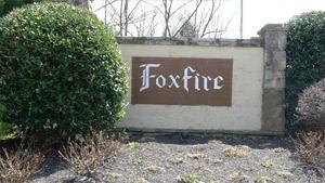 Fox Fire