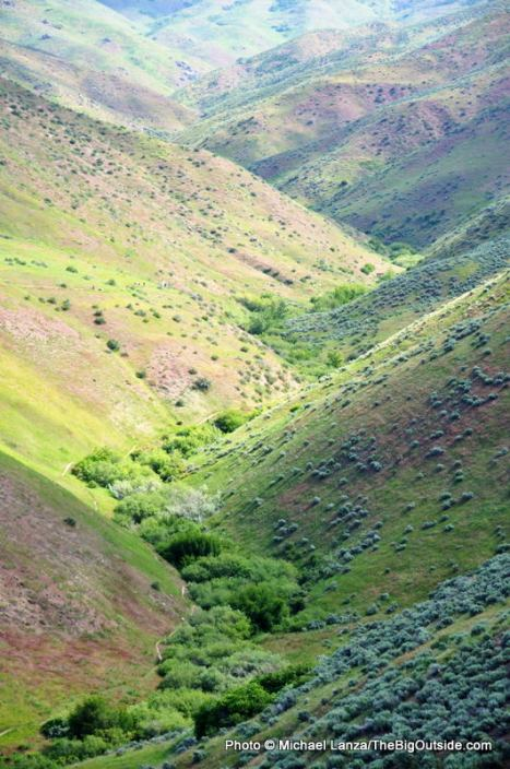 Upper Hulls Gulch in the Boise Foothills.