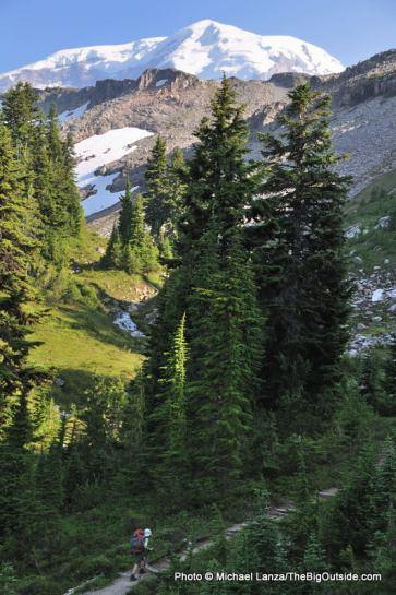Marmot Creek area.