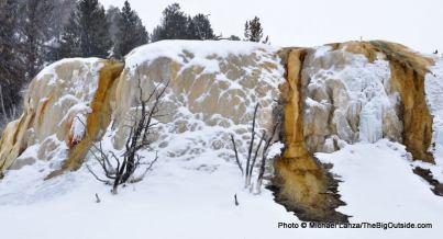 Upper terraces, Mammoth Hot Springs.