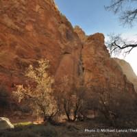 Spring Canyon campsite.