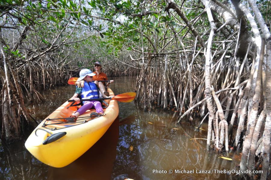 A mother and young daughter paddling a mangrove tunnel on the East River, in Florida's Everglades region.