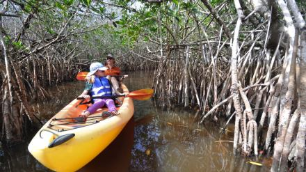 Photo Gallery: Paddling the Everglades