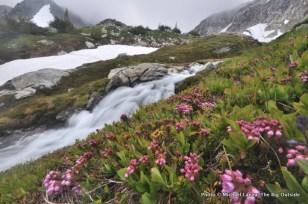 White Rock Lakes, Glacier Peak Wilderness, WA.