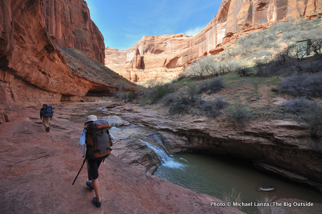 In lower Coyote Gulch.