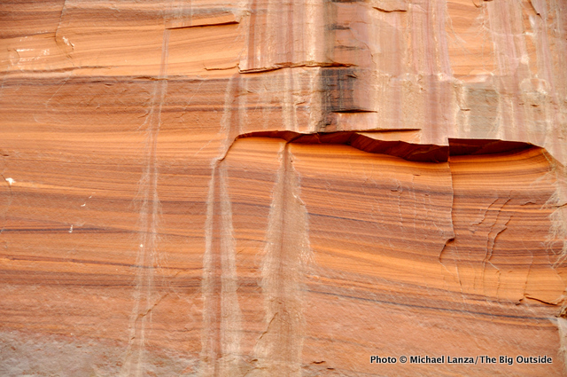 A cliff wall in upper Coyote Gulch.