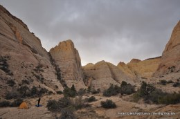 Unnamed canyon, Capitol Reef National Park.
