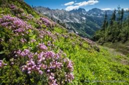 Spider Gap route, Glacier Peak Wilderness, Washington.