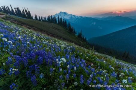 Sunset from Liberty Cap, Glacier Peak Wilderness, Washington.