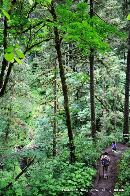 Gorge Trail.