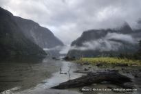 Hall Arm, Doubtful Sound, Fiordlands National Park, New Zealand.