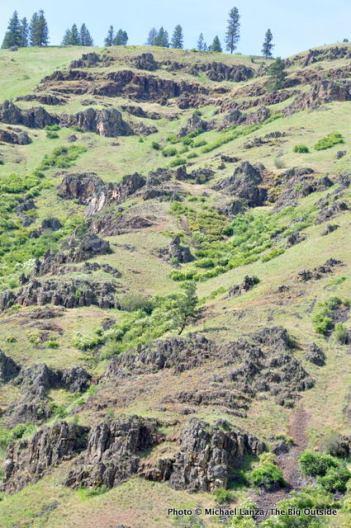 Grand Ronde River canyon near Troy, Oregon.