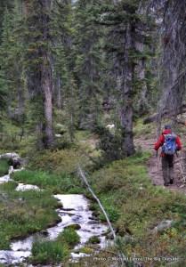 Trail 462 between Spangle Lake and Flytrip Creek.