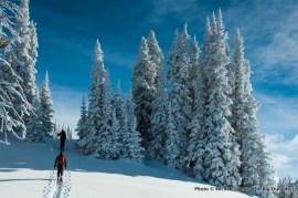 Skiing near Baldy Knoll.
