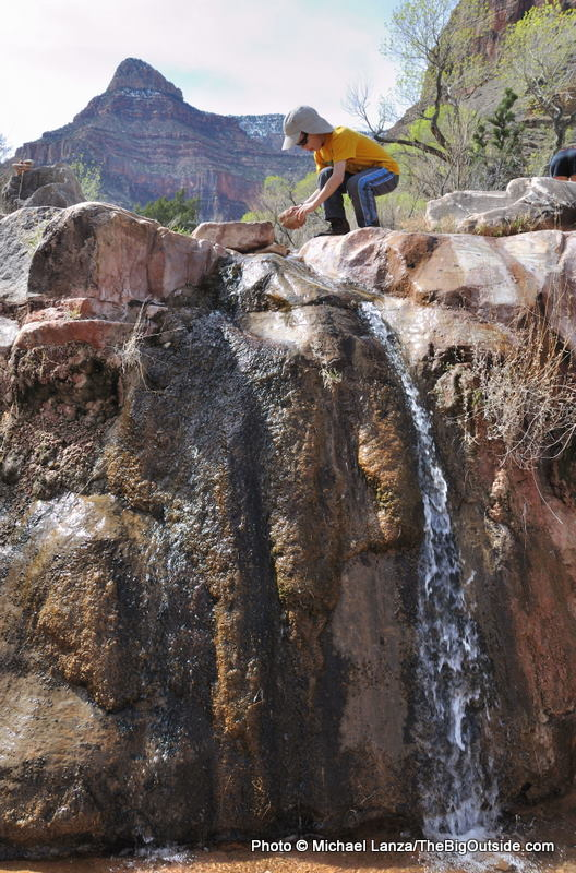 Cottonwood Creek, Grand Canyon