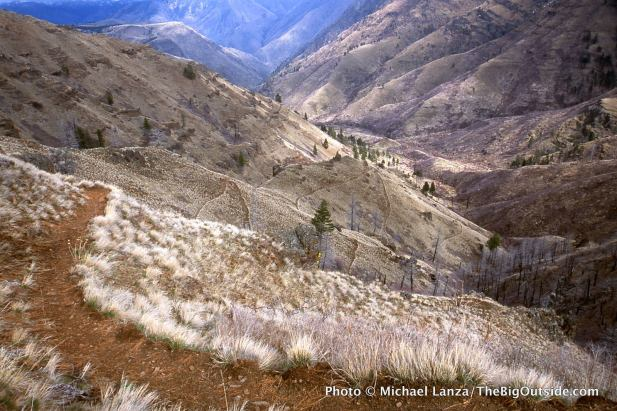 Saddle Creek Trail, Hells Canyon, Oregon.