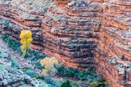 Hance Creek Canyon, Grand Canyon