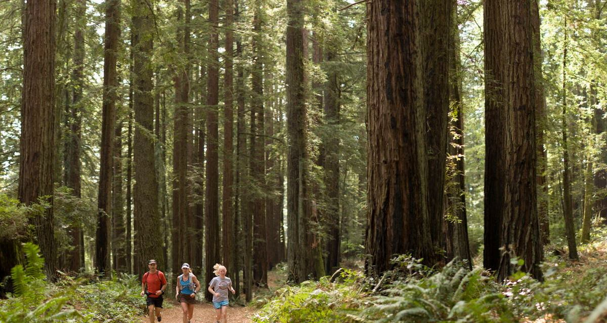One Photo, One Story: Trail Running (or Hiking) Across California's Marin County, Inn to Inn