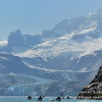 Johns Hopkins Inlet, Glacier Bay National Park, Alaska.