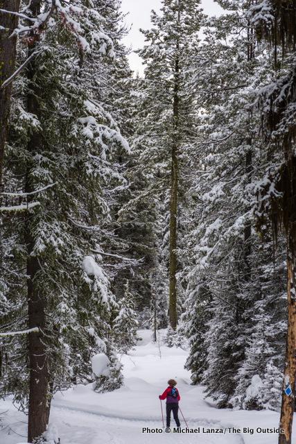 Ski touring Elkhorn Loop, Boise National Forest, Idaho.