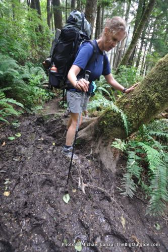 Mud on the overland trail around Hoh Head, along Washington's Olympic coast.
