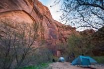 At Big Spring, Paria Canyon.