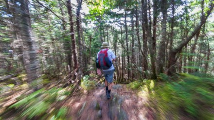 Ask Me: Protecting Your Family From Ticks While Hiking