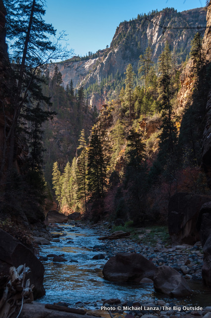 Second morning in The Narrows, Zion National Park.