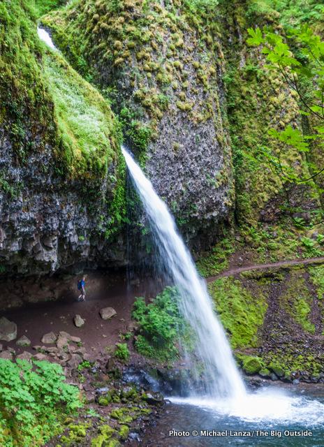 Ponytail Falls, Columbia Gorge, Oregon.