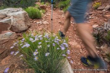 Hermit Trail.