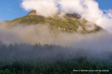 Morning fog, Milford Sound.