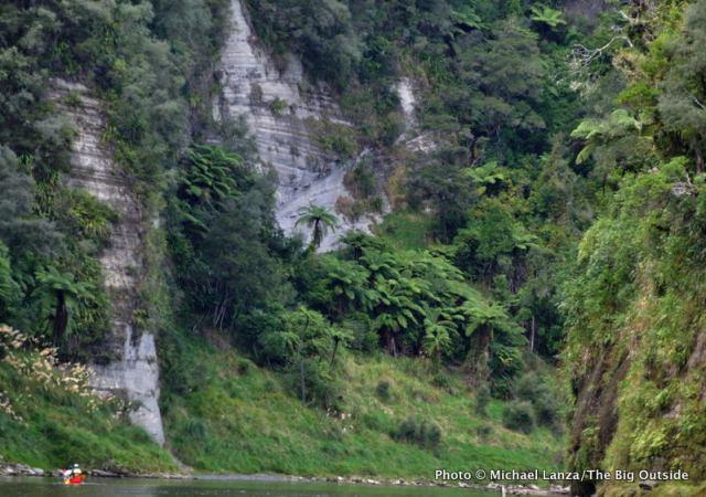 Whanganui River, North Island, New Zealand.