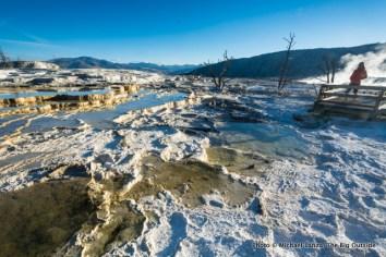 Mammoth Hot Springs.