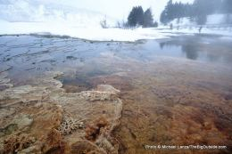 Upper terraces, Mammoth Hot Springs, winter.
