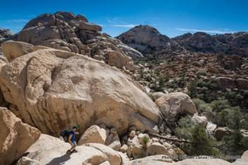 Wonderland of Rocks, Joshua Tree National Park.
