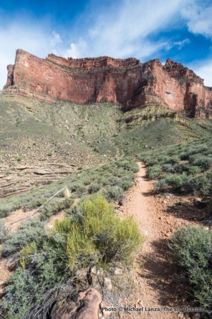 Tonto Trail at Horn Creek, Grand Canyon National Park.