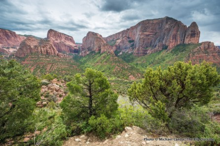 Kolob Canyons Viewpoint, Zion National Park.