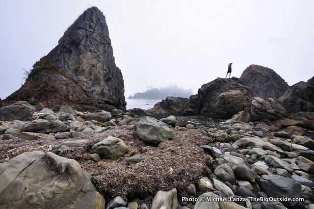 Toleak Point, Olympic coast, Olympic National Park.