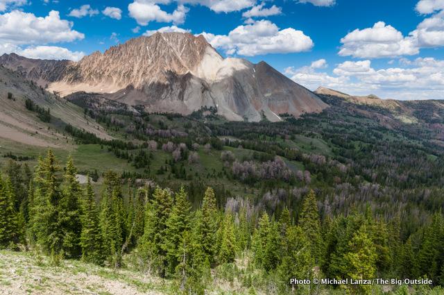 Chamberlain Basin and Castle Peak in Idaho's White Cloud Mountains.